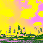 Pohoda Festival 2022 Trencsén