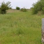 Paksi Ürge-mező tanösvény, ökotúra a Duna-Dráva Nemzeti Parkban