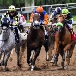 Orosházi lóverseny 2020. Nemzeti Vágta előfutama a Bogárzói Lóversenypályán