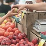 Termelői piac Balatonföldvár 2021