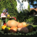 Október 23-i ünnepi hétvége Mór 2021.  Családi és ünnepi programok szállással az Öreg Prés Fogadóban
