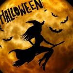 Halloween programok gyerekeknek 2021. Várjuk a Hatvani Vadasparkban