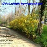 Meteor Természetbarát Turista Egyesület Kaposvár programok 2021