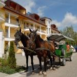 Kis-Balatoni kirándulás, lovas sétakocsikázás történelmi kalandpark és farmlátogatással Zalakarosról