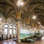 Magyar Mezőgazdasági Múzeum