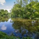 Tengelici arborétum Benyovszky-park