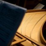 Nyári koncert Gödöllő 2020. Gödöllői Szimfonikus Zenekar szabadtéri koncertje a Gödöllői Kastélyban
