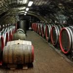 Tokaj Classic borászat Mád