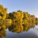 Amur horgászat ősszel a Tisza-tónál, szállással a tóparti Balneum Hotelben