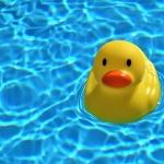 Harkányi éjszakai fürdőzés, Zenés Éjszakai Fürdő a Gyógy-és Strandfürdőben