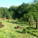 Erdőspusztai Bemutatóház - Bánki Pihenőközpont