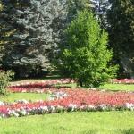 Sellyei Arborétum