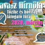Tavasz hírnökei túra 2020. Tőzike és hóvirág túra Bakonybél környékén