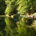 Szalajka-völgyi tanösvény Szilvásvárad, ökotúra az ország egyik leghíresebb kirándulóhelyén