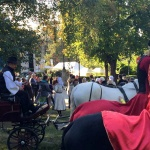 Dunakanyar Bor- és Pálinkafesztivál 2020 Vác