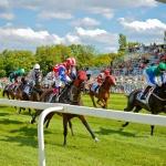 Lóversenyek Budapest 2020. Várjuk a Kincsem Parkban