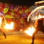 Dombos Fest 2020