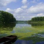 Mártély túra 2020. Kirándulások az ártér mentén a Kiskunsági Nemzeti Park szervezésében