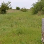 Ürge-mező tanösvény túra Paks környékén a Duna-Dráva Nemzeti Park szervezésében