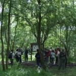 Nyéki-Holt-Duna tanösvény, kirándulás a fokozottan védett gemenci tanösvényen