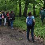 Bőköz tanösvény, ökotúra a Duna-Dráva Nemzeti Parkban Kisszentmárton Majláthpusztán