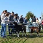 Hagyományos gazdálkodás tanösvény az Ős-Dráva Látogatóközpontban