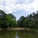 Jági tanösvény Pilisszentiván, ökotúra a Budai-hegységben, a Duna-Ipoly Nemzeti Parkban