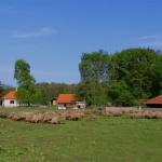 Homokpuszta-tanösvény, séta Belső-Somogyban, a somogyi pusztákon