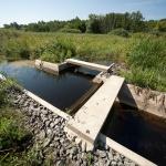 Páskom legelő tanösvény Dejtár, ökotúra a Duna-Ipoly Nemzeti Park területén