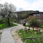 Sas-hegy tanösvény Budapest, ökotúra a Budai-hegységben a Duna-Ipoly Nemzeti Park szervezésében