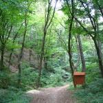 Koloska-völgy tanösvény Balatonfüred, ökotúra a Balatonnál