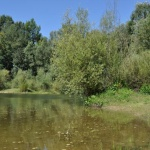 Őrtilosi Dráva-ártér tanösvény