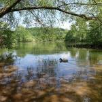 Nyéki-Holt-Duna tanösvény