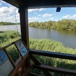 Sáros-alja madármegfigyelő torony