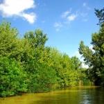 Óhalászi labirintuslátogatás egyénileg wellness szállással a Tisza-tónál