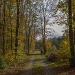 Gulya-dombi tanösvény Veszprém