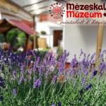 Mézeskalács Múzeum Szekszárd