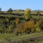 Kapos-hegyháti Natúrpark