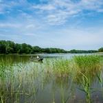 Wellness horgászattal a Tisza-tónál, tiszafüredi wellness szállodánkban
