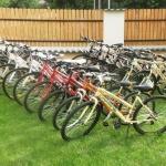 Zebrabringa Kerékpárkölcsönző Gárdony