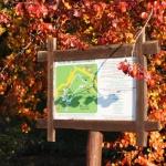 Nagyvillámi Erdészeti Tanösvény Visegrád