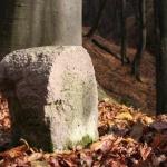 Áprily-völgyi rege-termő tanösvény Visegrád