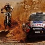 Terep-rallye versenyek 2021
