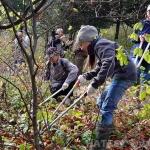 Hajagi Természetvédő és Szabadidő Egyesület - HATESZ