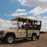 Vadaspark látogatás a Hortobágyon, ismerje meg az ősi puszta vadvilágát