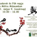 Madarak és Fák Napja 2021. Mátra Múzeum