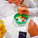 Budapesti programok iskolásoknak a Csodák Palotájában
