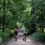 Családi nyaralás a Bakonyban, családi kalandhét a Nagy-Magyarország Parkban