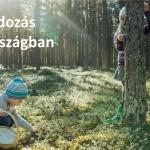 Észt Kulturális Intézet programok 2021