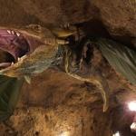 Tettyei Mésztufa-barlang Pécs, látogatás vezetéssel a hegy belsejében